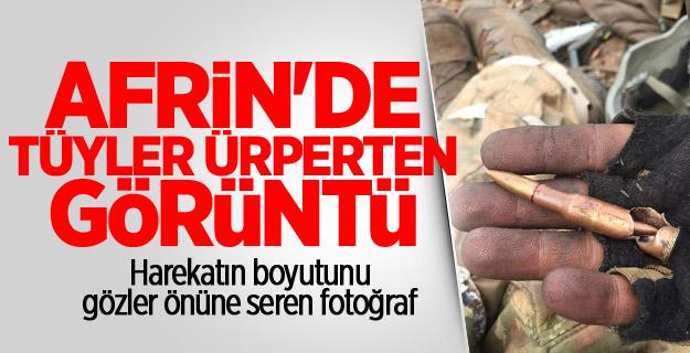 Afrin'den gelen fotoğraf hayrete düşürdü