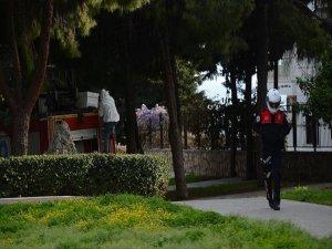 Antalya'nın Merkezinde 'Arı' Operasyonu