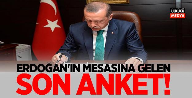 Seçim kararını vermeden önce Erdoğan'ın masasına gelen son anket!