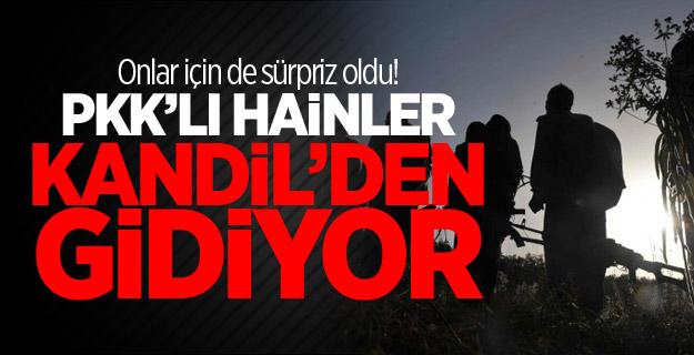 Onlar için de sürpriz oldu! PKK'lı hainler Kandil'den gidiyor