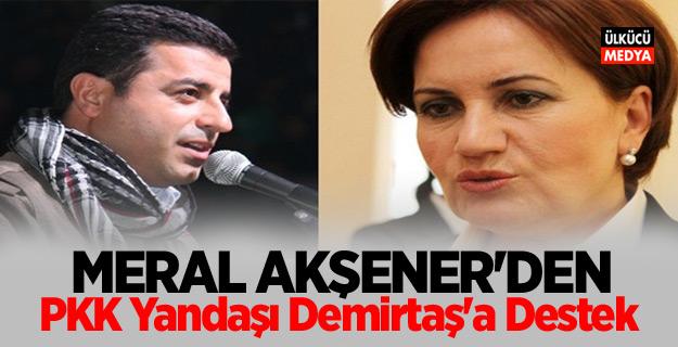 Meral Akşener'den PKK Yandaşı Demirtaş'a destek
