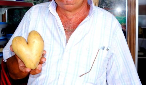 Bu patates görenleri şaşırtıyor