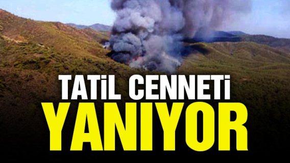 Muğla Marmaris'te orman yangını..