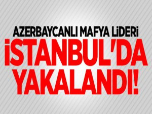 Azerbaycanlı mafya lideri İstanbul'da yakalandı!