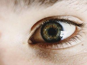 Görme Bozukluklarının Tedavisi İçin Retina Üretildi