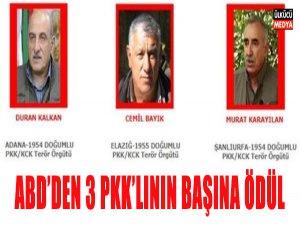 ABD 3 PKK'lının Başına Ödül Koydu