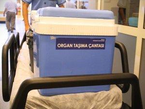 Organ Nakli Umudu Yaşam Süresini Uzatıyor