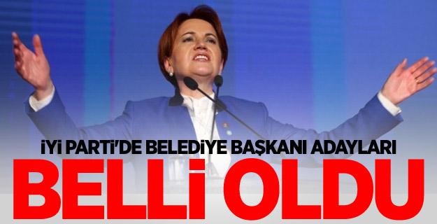 İYİ Parti'de belediye başkanı adayları belli oldu