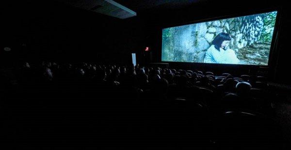 ABD'de 'Ayla' Filmine Yoğun İlgi