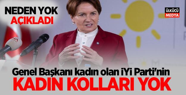 Genel Başkanı kadın olan İYİ Parti'nin Kadın Kolları yok