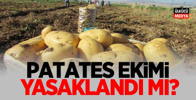 Patates ekimi yasaklandı mı?