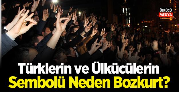 Türklerin ve Ülkücülerin Sembolü Neden Bozkurt?