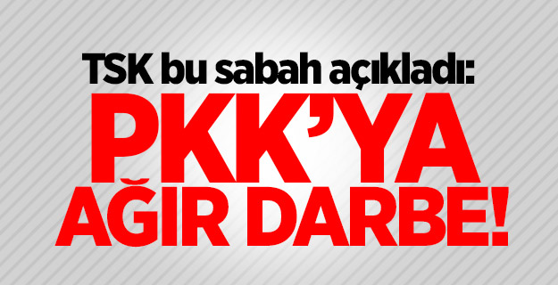 Bakanlık açıkladı: PKK'ya bir darbe daha