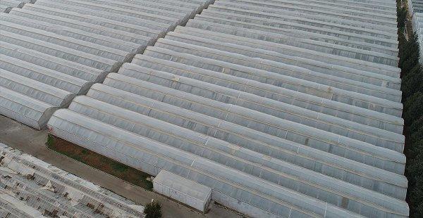 Tarıma Yönelik Kredi Paketiyle Gıda Enflasyonu Dengelenir