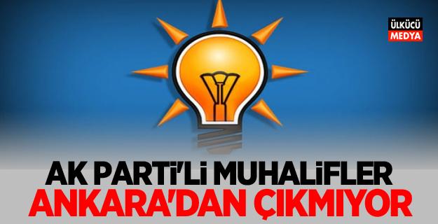 Ak Parti'li muhalifler Ankara'dan çıkmıyor