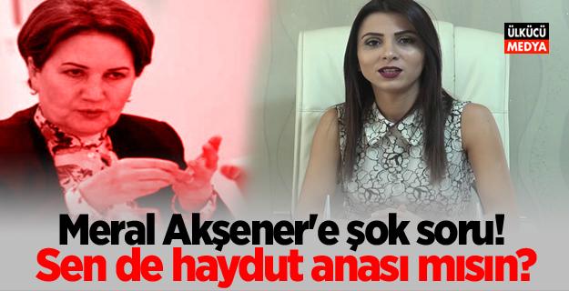 """Meral Akşener'e şok soru! """"Sen de haydut anası mısın?"""""""