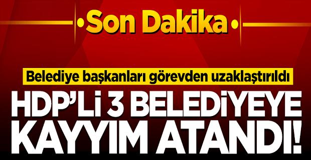 HDP Diyarbakır, Van ve Mardin belediyelerine operasyon