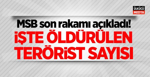 MSB Açıkladı: İşte Öldürülen terörist sayısı