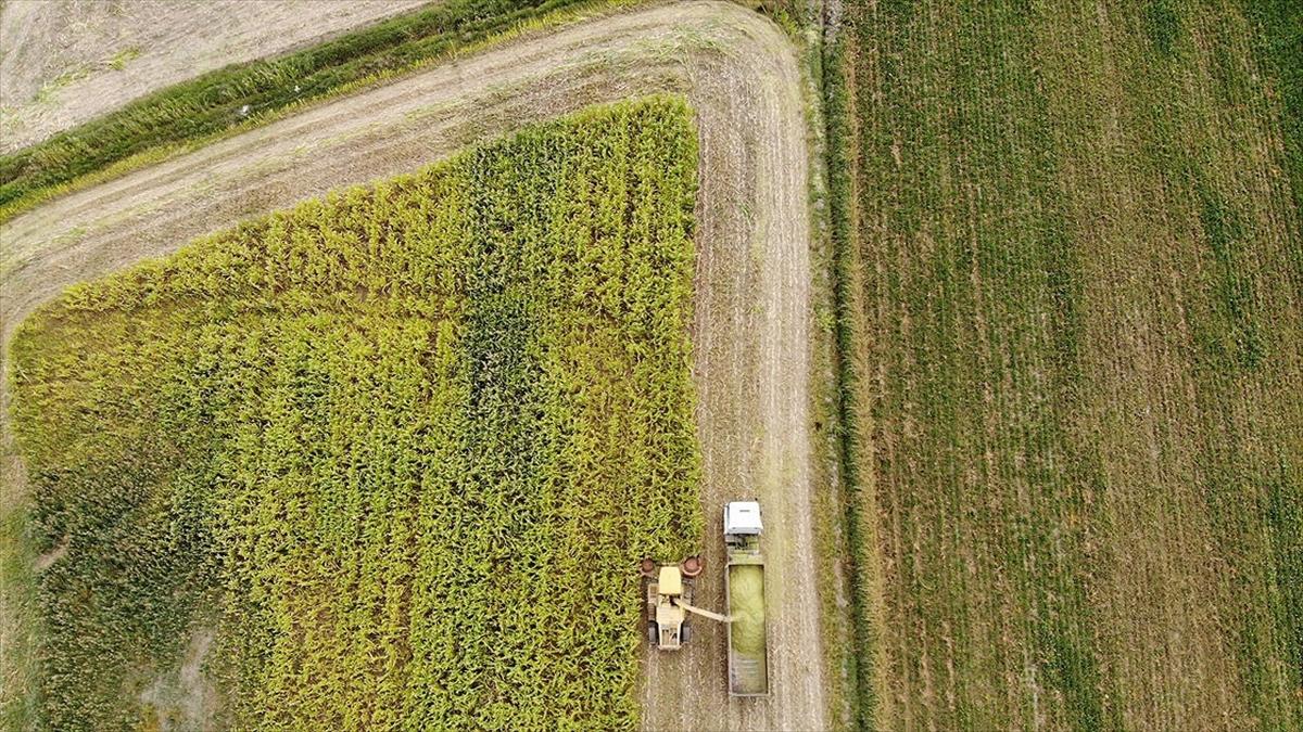 Gıda üretimine 'sözleşme' güvencesi