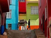 Dar Sokakların Çöpçüsü Nazlı İle 'Beyaz'ın Dostluğu