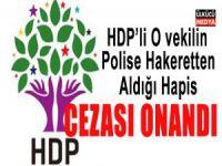 Polise Hakaret Eden HDP'li Milletvekilinin Cezası Onandı