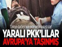 Yaralı PKK'lılar Avrupa'ya taşınmış!