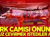 Türk camisi önünde domuz çevirmek istediler ama...