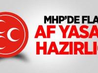 MHP'de flaş af yasası hazırlığı