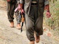 PKK'ya bir darbe daha! Teröristler itiraf etti