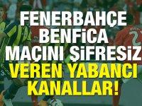 Fenerbahçe Benfica maçını (şifresiz) veren yabancı kanallar!