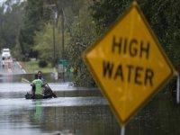 Florence Kasırgasında 1,7 Milyon Tavuk Telef Oldu