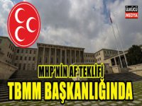 MHP Af Teklifini TBMM Başkanlığına Sundu