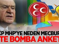 AKP, MHP'ye neden mecbur? İşte bomba anket