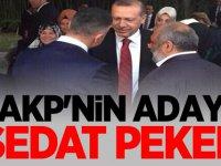 AKP'nin Sakarya adayı Sedat Peker!