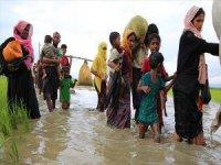 Endonezya'dan ASEAN'a 'Arakanlı Müslümanlar' İçin Çağrı