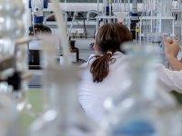 Türk Bilim İnsanları Gıda Morfinlerini Parçalayan Enzim Üretti
