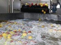 Erzincan'dan 3 Kıtaya Meyve Suyu İhracatı