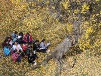 Kadın Öğretmenler Köylerin Gelişmesine Katkı Sağlayacak