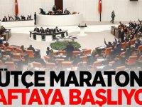 TBMM Genel Kurulunda bütçe maratonu haftaya başlıyor