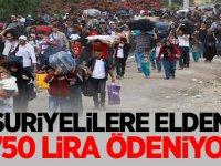 """""""Suriyelilere elden 1750 lira ödeniyor"""""""