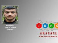 Şırnak'ta Gri Listedeki Bir Terörist Teslim Oldu
