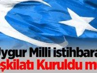 Uygur Milli İstihbarat Teşkilatı Kuruldu mu?