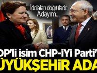 HDP'li isim CHP - İYİ Parti'nin büyükşehir adayı!