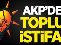 AKP'de Toplu İstifa