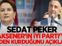 Sedat Peker: Meral Akşener'in İyi Parti'yi neden kurduğunu açıkladı!
