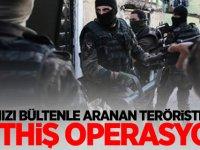 Kırmızı bültenle aranan teröristlere müthiş operasyon!