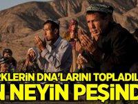 Türklerin DNA'larını topladılar! Çin neyin peşinde?