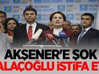 Halaçoğlu İyi Parti'den istifa etti