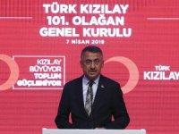 Cumhurbaşkanı Yardımcısı Oktay: Dış Politikada Dayatmalara Müsamaha Göstermeyeceğiz