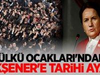 Ülkü Ocakları'ndan Meral Akşener'e Tarihi ayar
